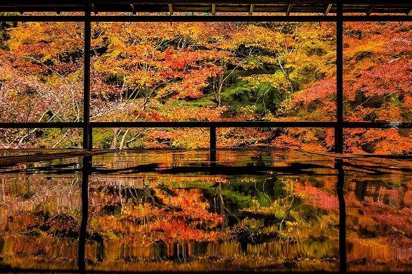 2018年版】秋の京都を彩る紅葉の...