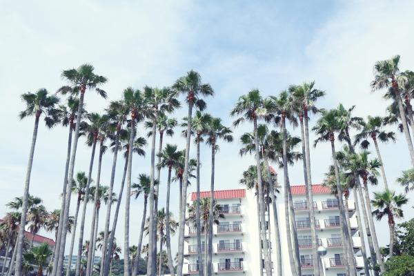 △「小坪海浜公園」からマンション方面を撮影するとリゾート感たっぷりの写真が撮れますよ