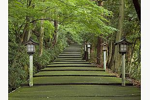【石川】現地ガイドが案内!白山比め神社おついたちまいりツアー(昼食付)