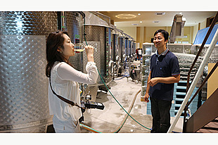 【石川・輪島市】ワインの醸造所見学ツアー<オススメ2種類飲み比べ>